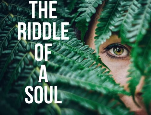 Review: The Riddle Of A Soul by Steve Sheppard