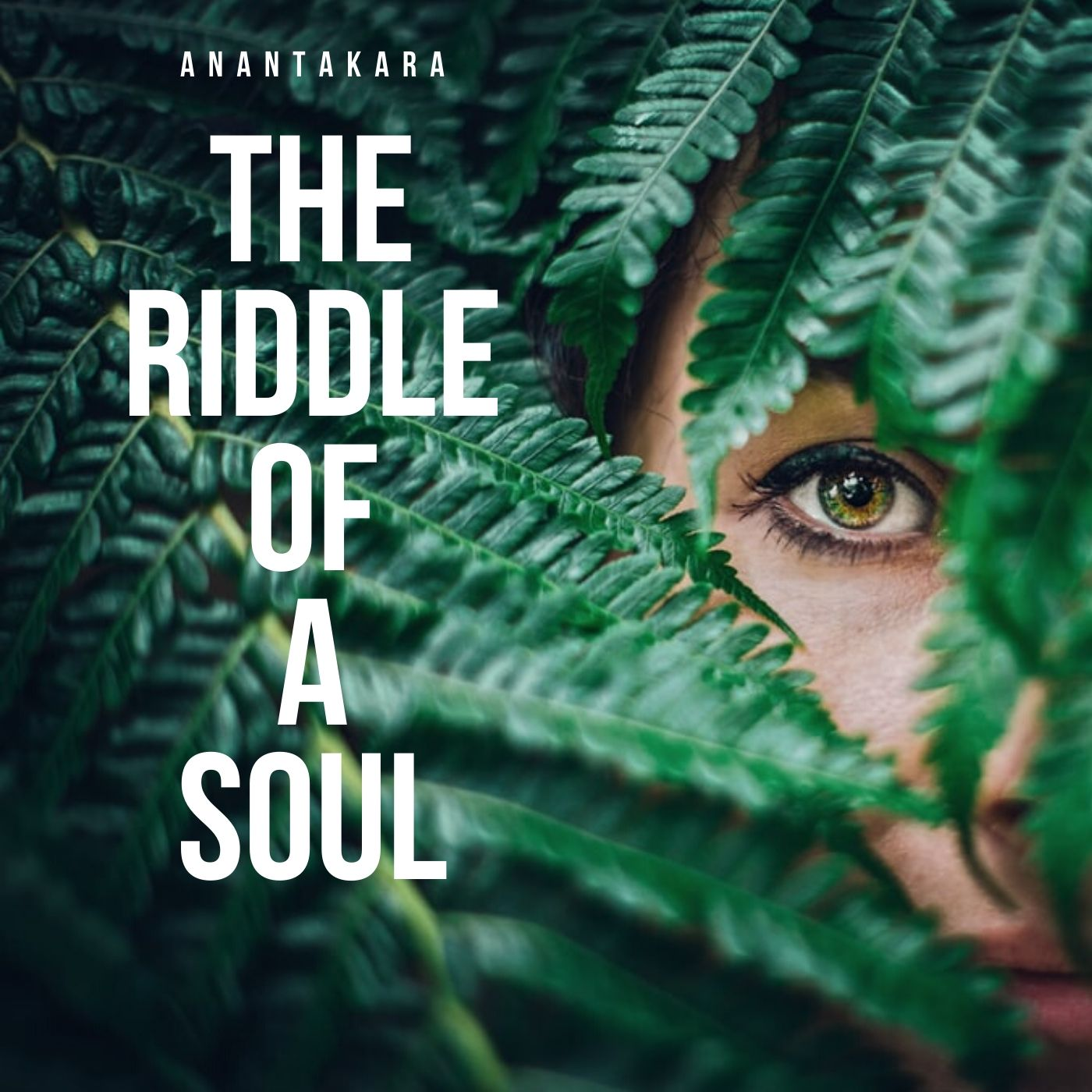 Riddle Of A Soul by Anantakara